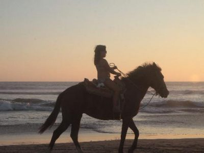 paseos-a-caballo-y-renta